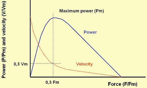 Relationship between applied force and the velocity of movement