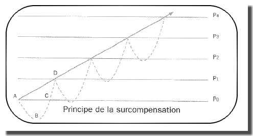 principe de surcomponsation